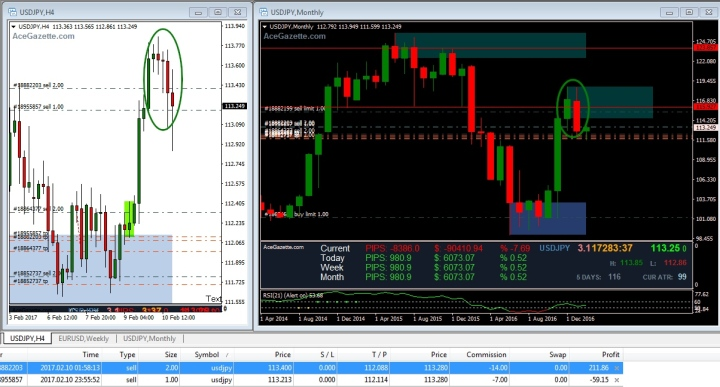 Forex trading 10 monthly return net